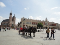 Guided sightseeing tours in Poland