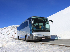 Guided sightseeing tours in Tyrol